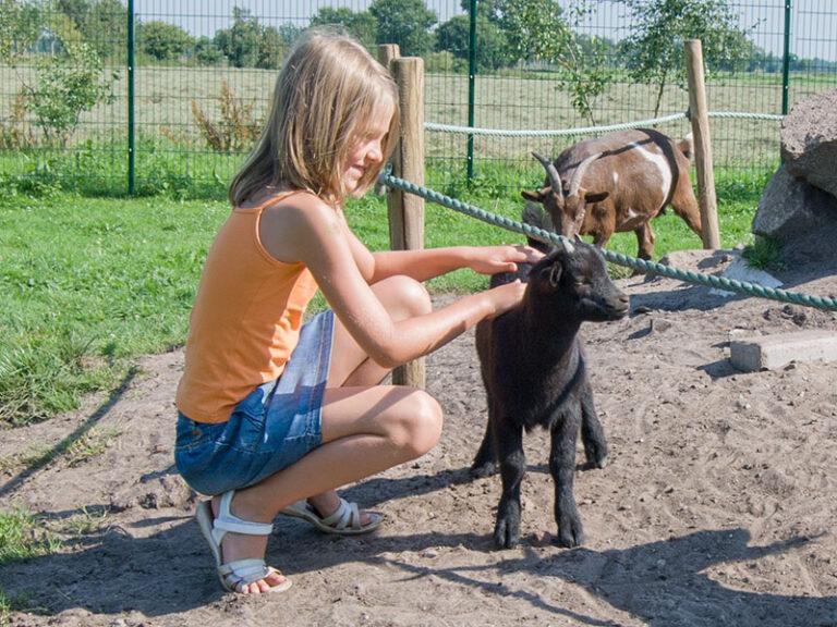Jaderpark Tier- und Freizeitpark