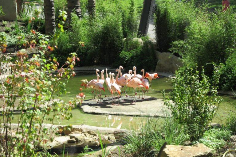 Grüner Zoo Wuppertal