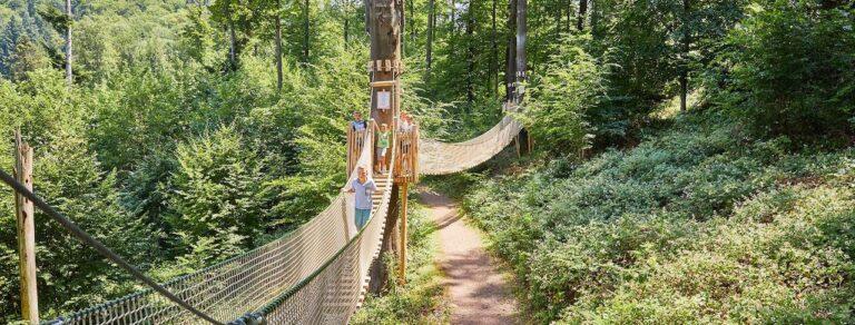 Baumkronenweg Waldkirch Brücke