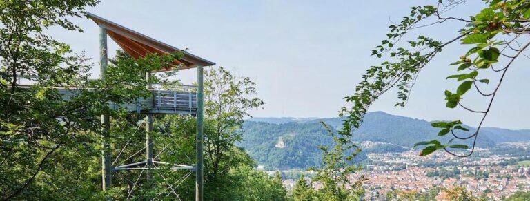 baumkronenweg waldkirch Turm