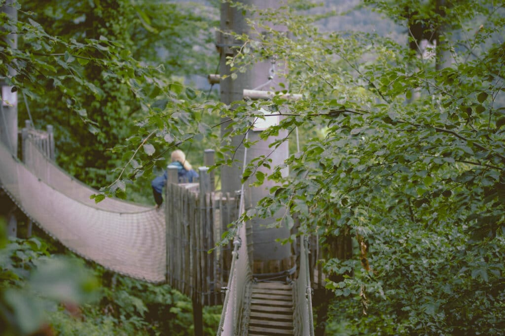 fpe baumkronenweg waldkirch 53