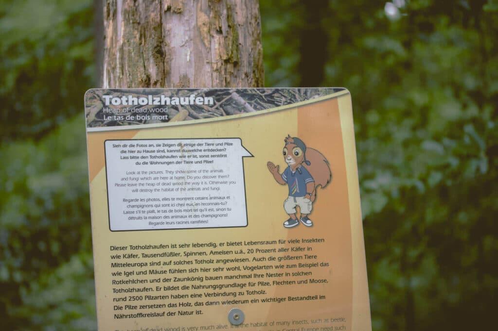 fpe baumkronenweg waldkirch 98