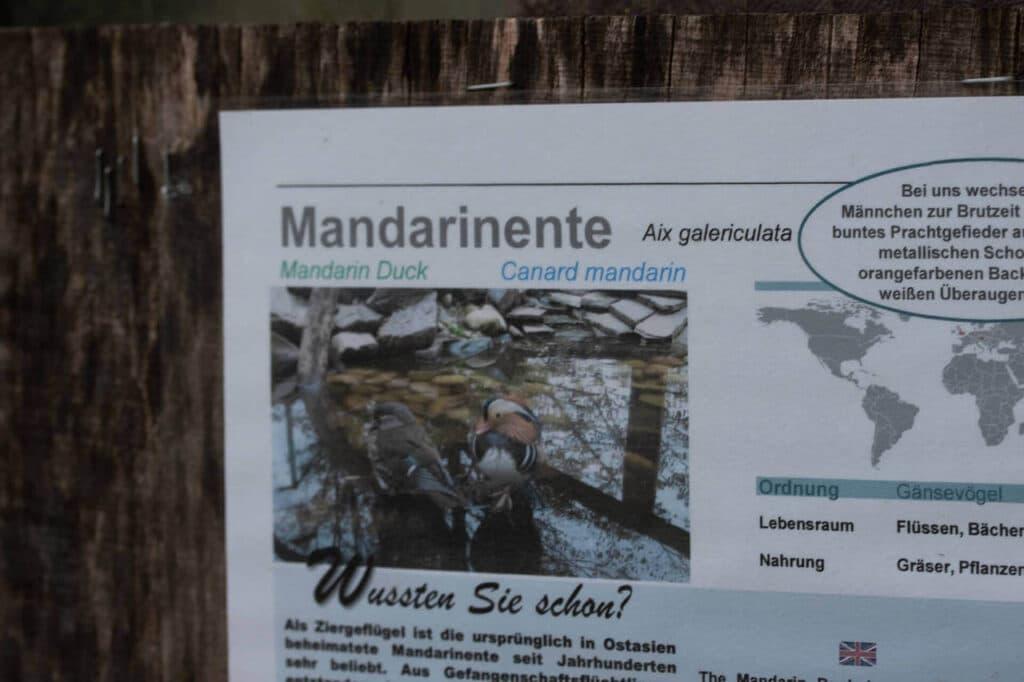Schwarzwaldzoo Waldkirch Schild