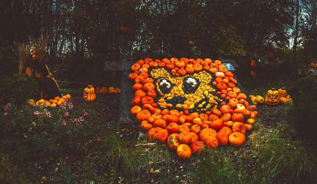 Skyline Park Halloween 1 1
