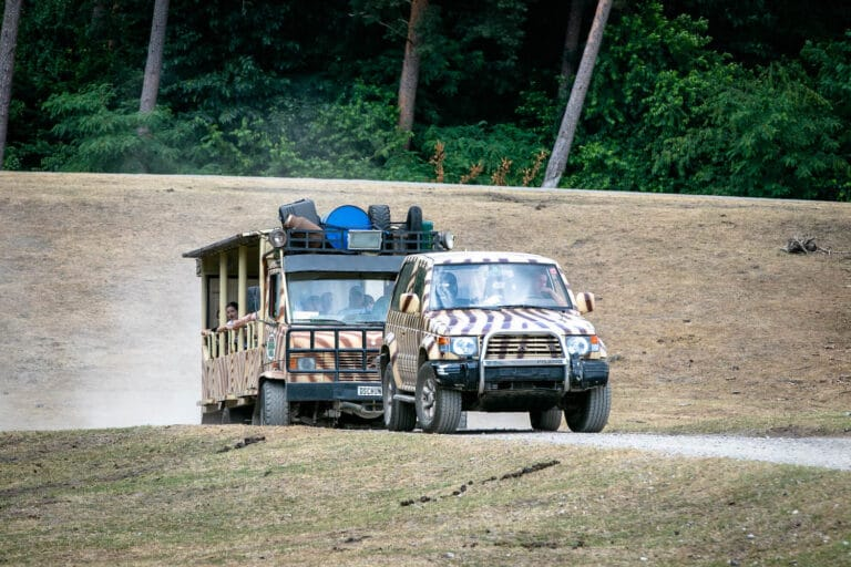 Serengeti Park Hodenhagen Autos