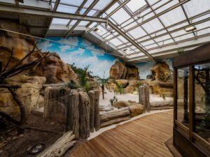 Zoo Duisburg Leguaninsel